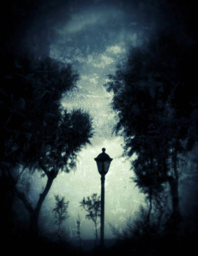 Le lampadaire - The street lamp, 2017