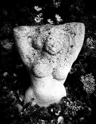 La statue et les fleurs - The statue and the flowers, 2017