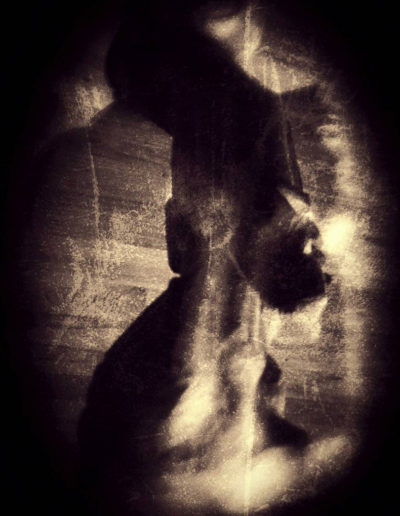 L'esprit de la nuit - The spirit of the night, 2017